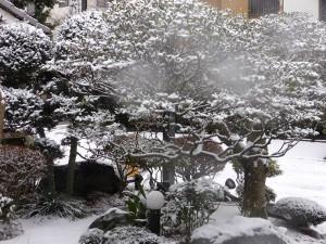 snow201601